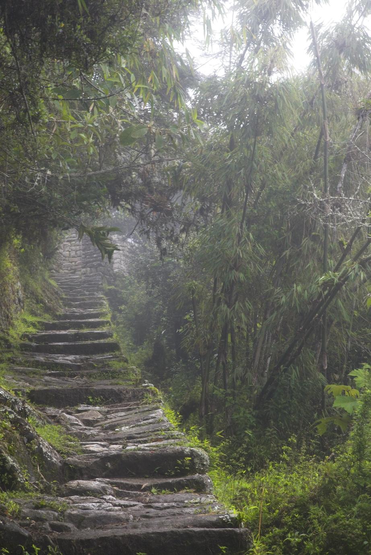 Machu Pichu stairs